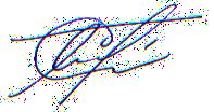 autograph прозрачный